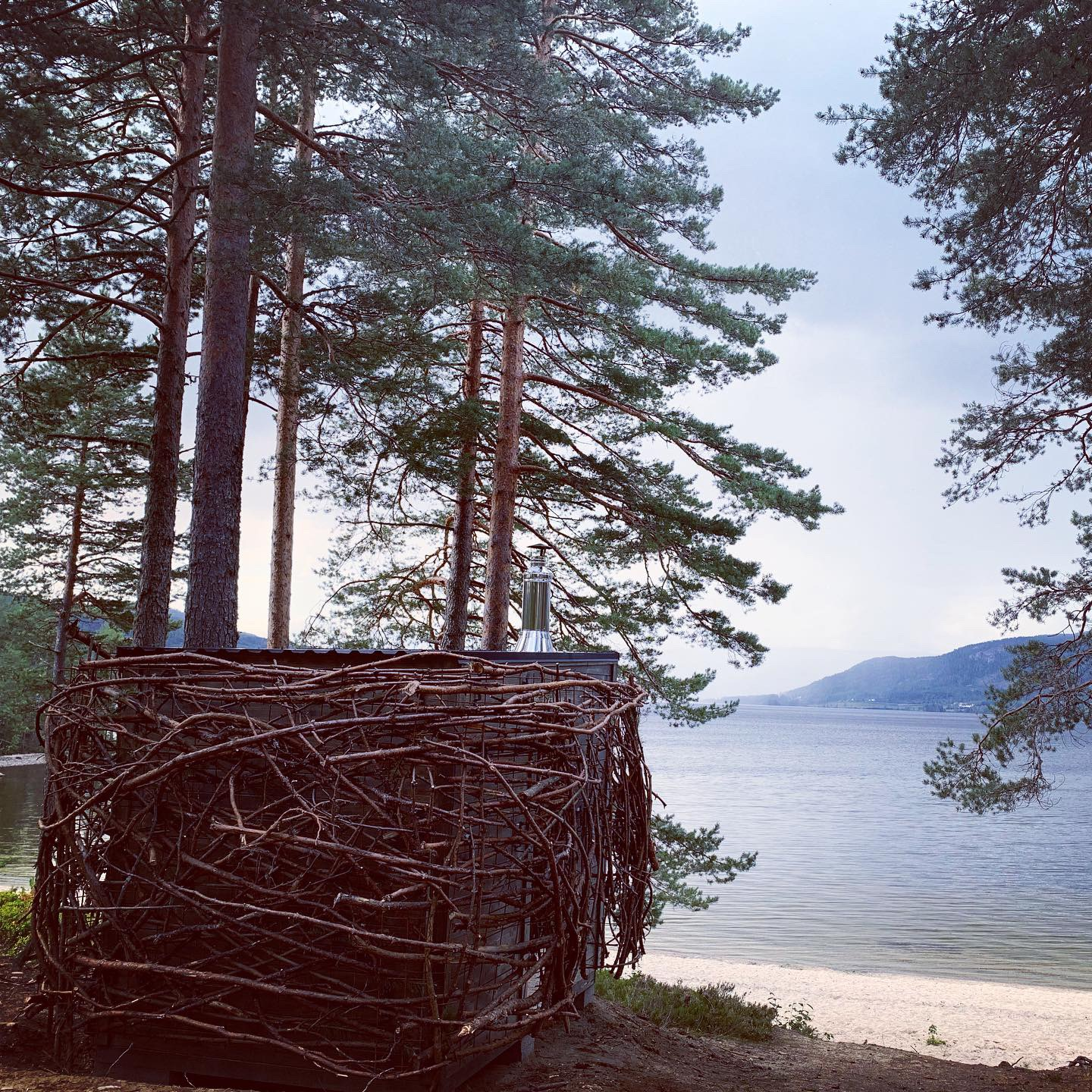 birds nest sauna with beach view